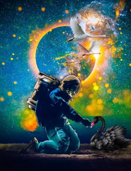 Astronauta y cisne negro